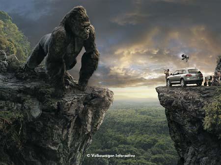 Touareg meets King Kong